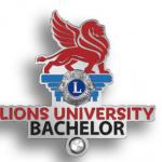 Bachelors-Pin